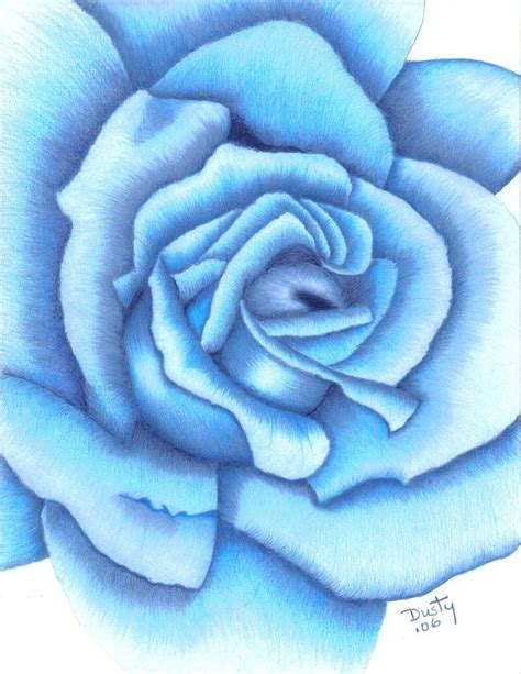diamond blue rose drawing by dusty reed
