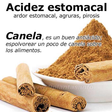 alimentos anti acidez acidez estomacal la canela es un buen anti 225 cido contra