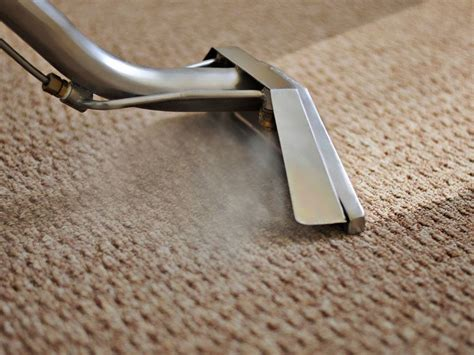 cleaning rugs green carpet cleaning carpet cleaning boca raton