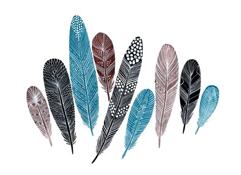 feather with feathers plumes