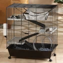 all living things luxury rat pet home our favorite products precious whiskers