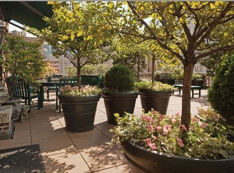 large planters for trees gardening tips from the rooftop balconies of new york