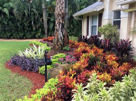 all about landscaping 25 best ideas about florida landscaping on