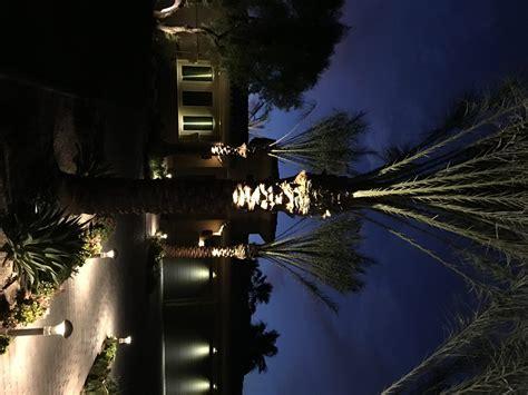 palm lighting lighting ideas
