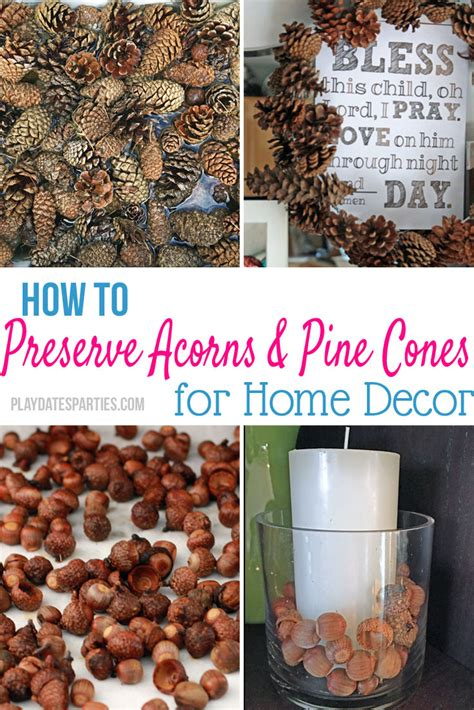 how to preserve pinecones how to preserve pine cones and acorns for decorating