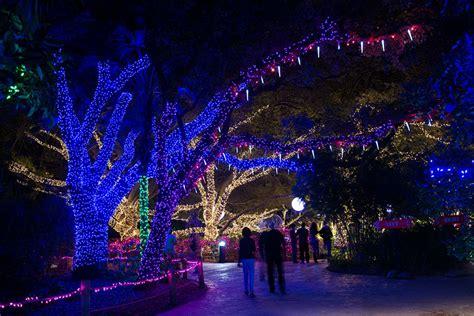 lights at the houston zoo houston zoo zoo lights