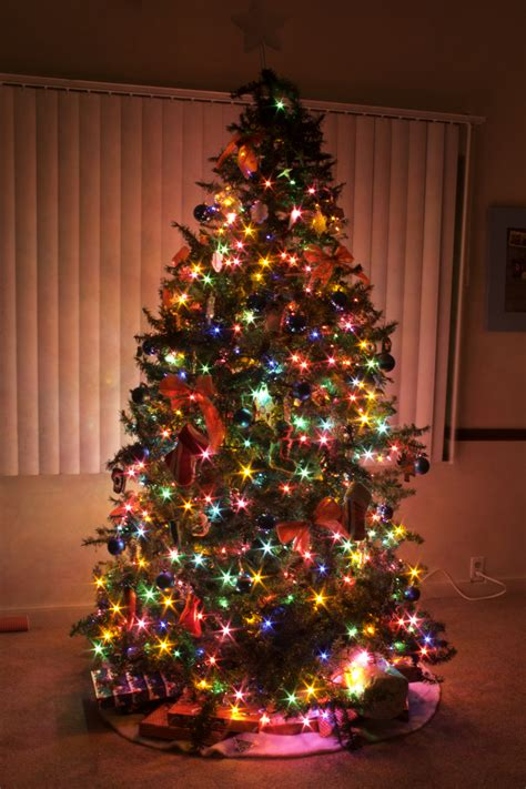 decorated trees with multicolor lights decorated trees with multicolor lights 28 images tree