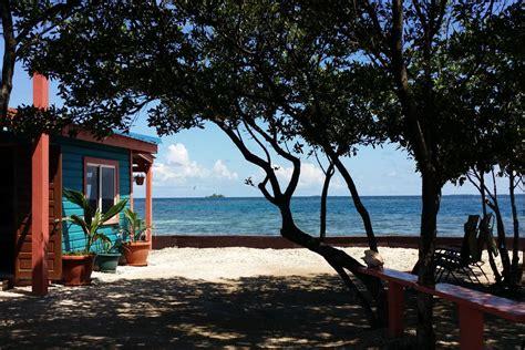 bird island placencia bird island in belize