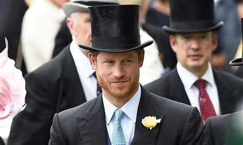 prince harry s further details released about prince harry s visit to