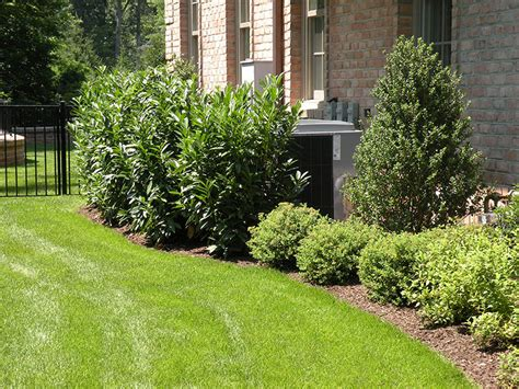 garden ideas for side of house landscaping landscaping ideas along side of house