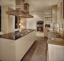 modern kitchen cabinet pictures new york modern modern kitchen new york by