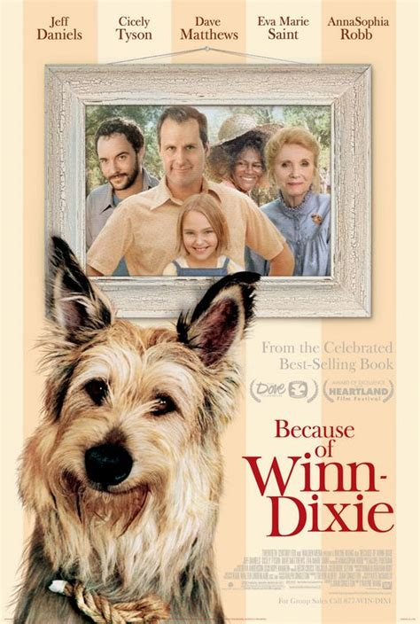 because of winn dixie pictures from the book because of winn dixie movieguide reviews for