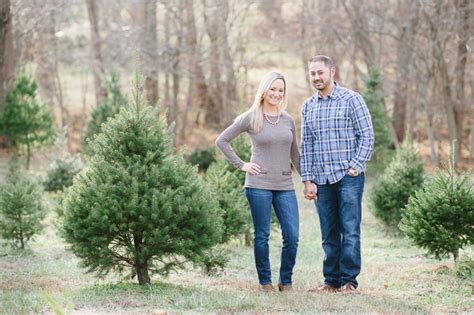 tree farm in maryland collection of tree farms in md best