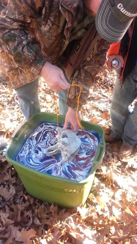 spray paint in water dip 1000 ideas about painted cow skulls on cow