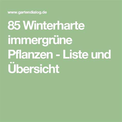 pflanze immergrün winterhart blühend 25 best ideas about winterharte pflanzen on