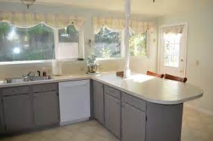 what is the best way to paint kitchen cabinets white painting kitchen cabinets by yourself designwalls
