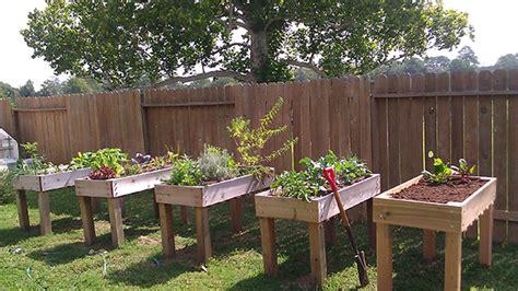 diy vegetable garden boxes home gardening in spaces
