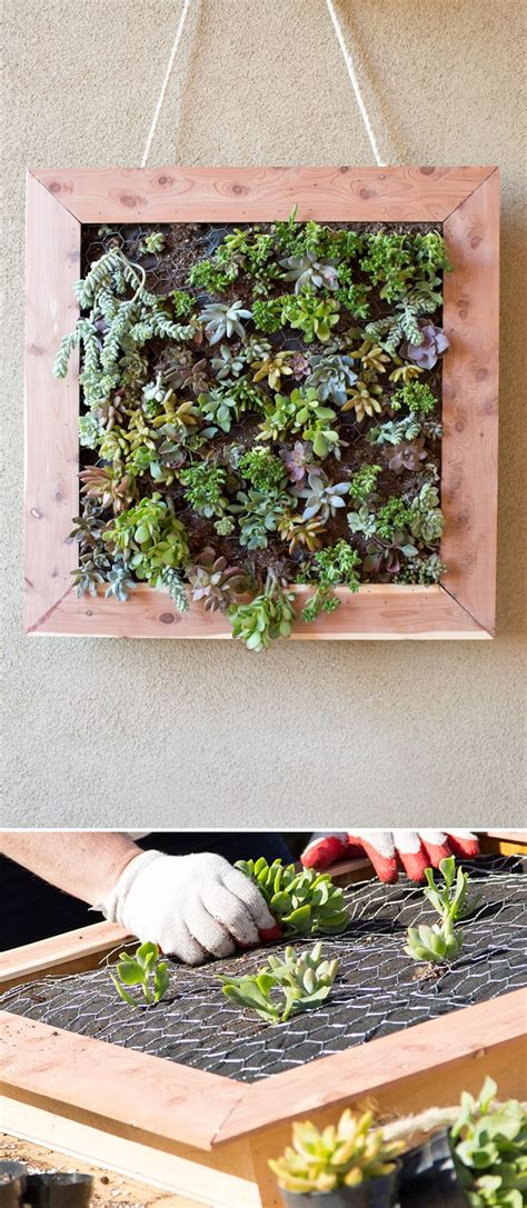 how to make a wall garden 25 best ideas about succulent frame on