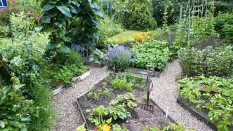 vegetable gardens plan a beautiful vegetable garden