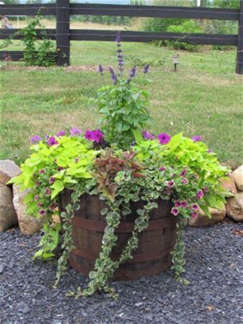 Garden Ridge Planters 23 Best Images About Planting Ideas On