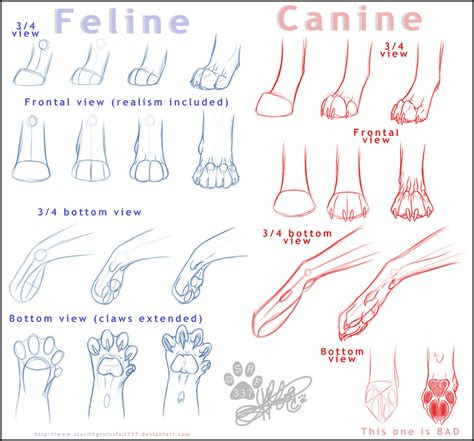 cat tutorial fancy feline tutorial reload by ninjakato on deviantart