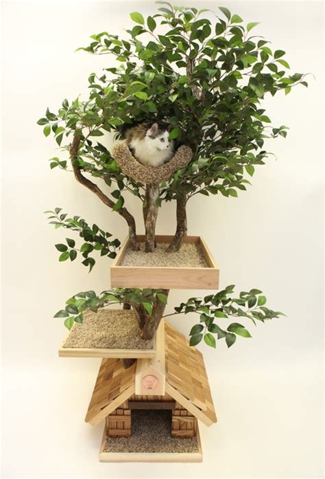 tree for cats the box house a cat tree i wouldn t be embarrassed to