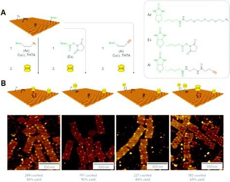 dna origami applications dna origami technology for biomaterials applications