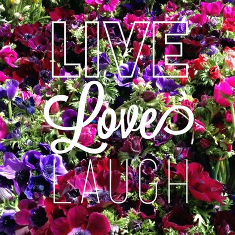 live laugh and live laugh pictures photos and images for