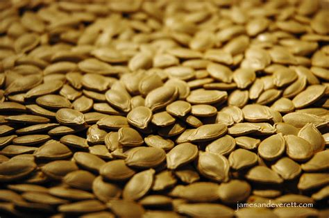 with seed roasted pumpkin seeds what s cooking