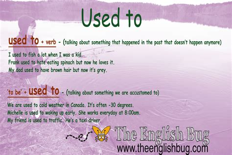 what are used for used to grammar the bug