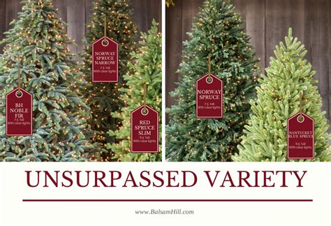 where to buy balsam hill trees my balsam hill tree balsam hill artificial