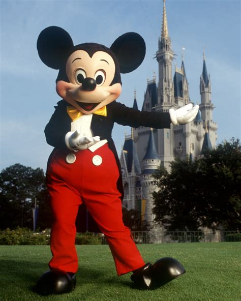 grab a fastpass to meet mickey mouse at the magic kingdom