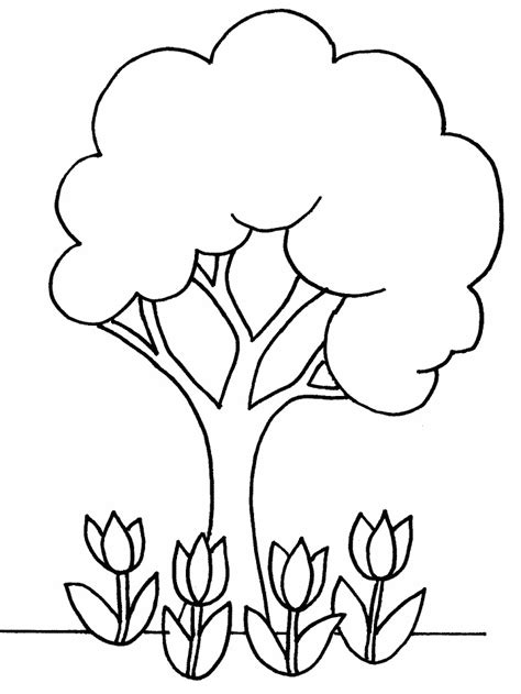 tree colouring in pages pine tree coloring pages az coloring pages
