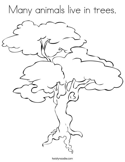 tree color in many animals live in trees coloring page twisty noodle
