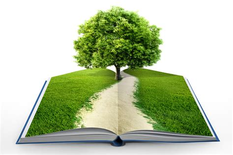 the tree picture book grow a book turn your story idea into a workable plot
