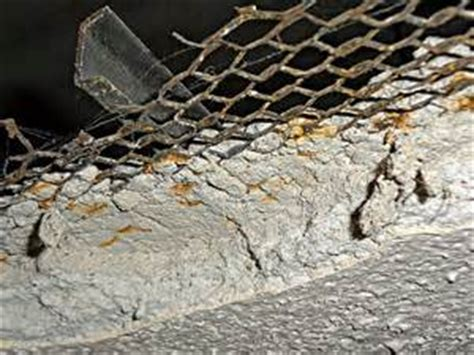 Mold On Ceiling Tiles by Finog Environmental Pictures Of Asbestos Containing