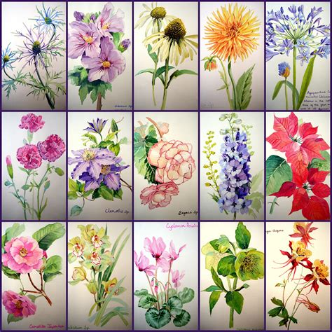 fast flower painting easy watercolor flowers
