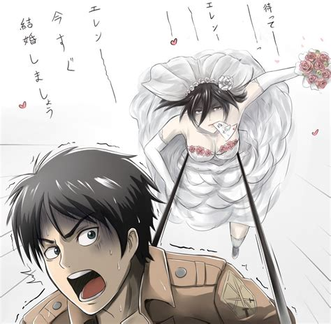 attack on titan eren and mikasa mikasa x eren