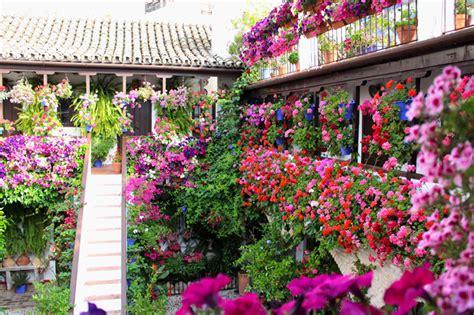 discover quot los patios de cordoba quot festival of flowers and - Los Patios Cordoba