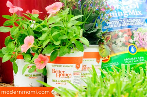 better homes and gardens flowers starting summer with a flower garden of own modernmami