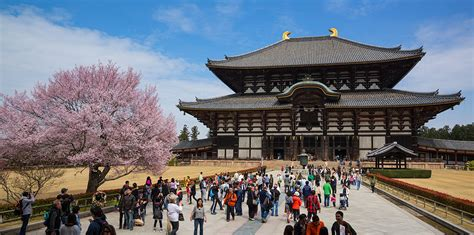 in japan 10 best things to do in nara japan 2018 travel guide