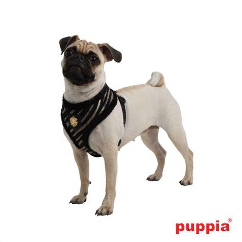 Zwemvest Voor Chihuahua by Puppia Hondentuig Polar Harness A Zwart
