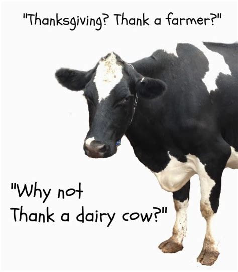 The Udder Side: Thank A Dairy Cow