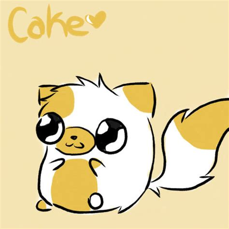 cake the cat cake the cat images cake the cat wallpaper and