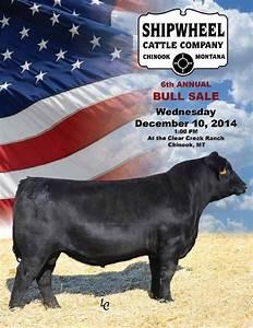 Shipwheel Cattle Company 6th Annual Bull Sale Catalog by ...