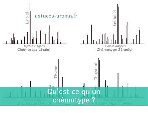 savoir qu est ce qu un ch 233 motype en aromath 233 rapie astuces aroma
