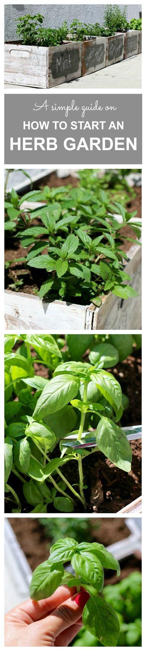 Best 25+ Hydroponic Herb Garden Ideas On Pinterest