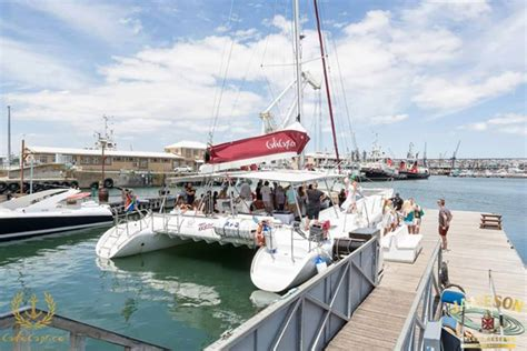 Catamaran Trips In Cape Town by Yacoob Yachts Jolly Roger Cruises Tigresse