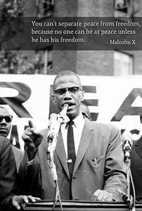 Civil Rights Movement Leaders Collage   www.imgkid.com ...