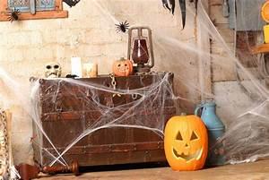 Halloween Deko Tipps : bildquelle robertlamphoto ~ Markanthonyermac.com Haus und Dekorationen